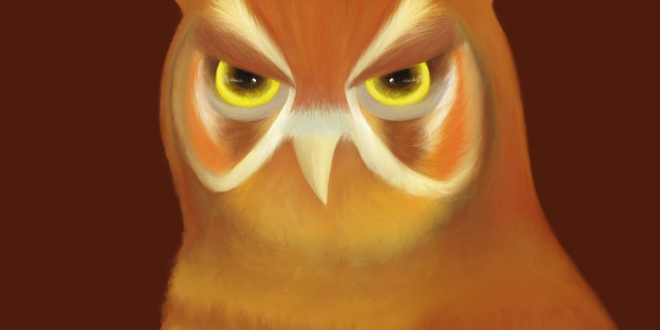 Scowling Owl